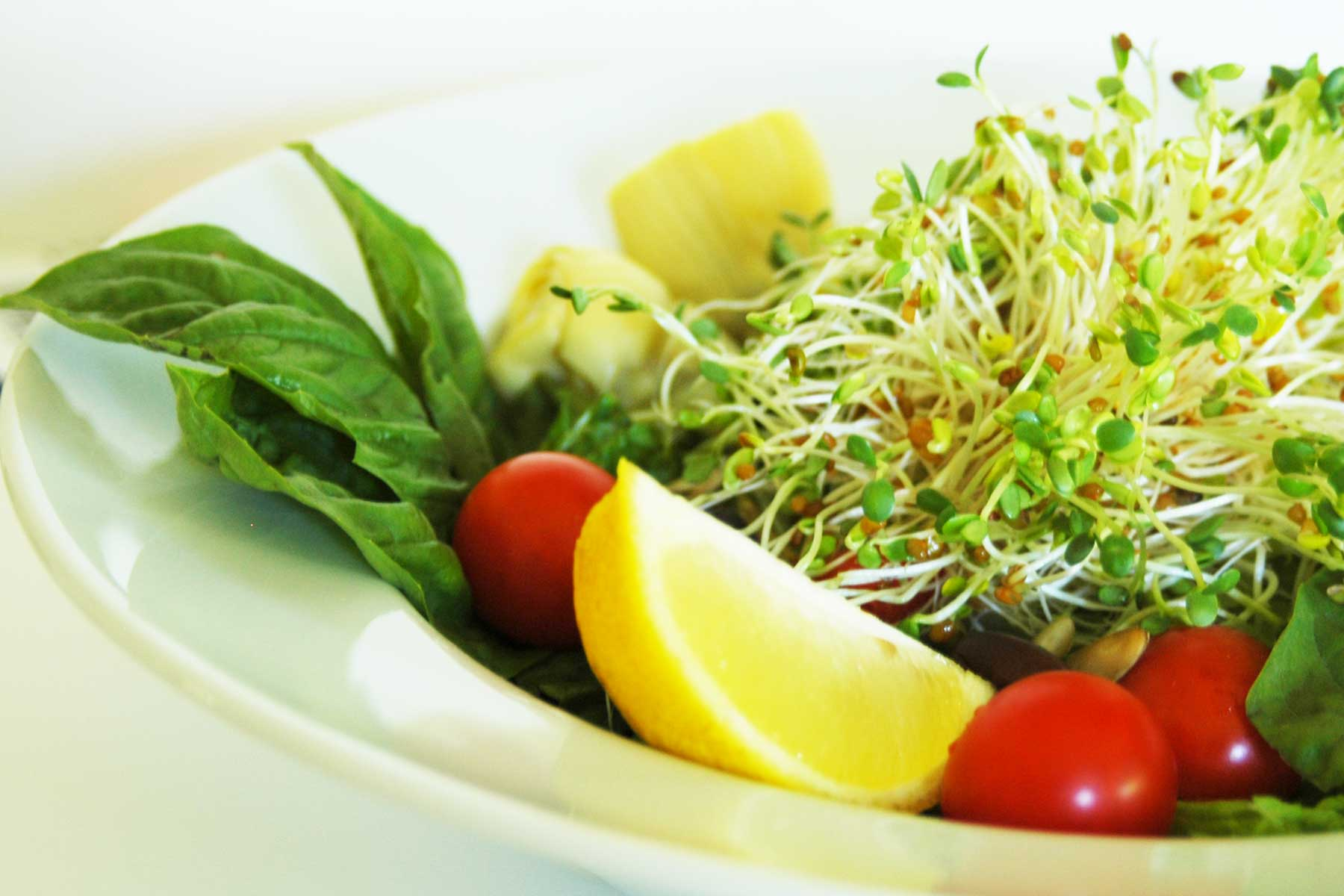 basil and sprout salad with lemon juice dressing